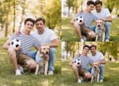 koláž otce a syna s fotbalem sedící na trávě a mazlící se zlatý retrívr