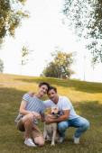 otec objímání teenager syn poblíž zlatý retrívr zatímco sedí na trávě v parku