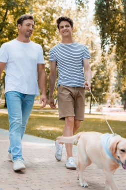 selective focus of teenager son and father walking with golden retriever on asphalt
