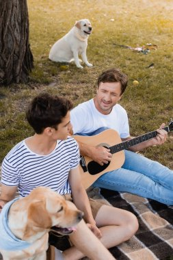father playing acoustic guitar near teenager son and golden retrievers in park