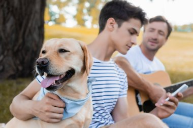 selective focus of golden retriever near teenager boy with smartphone and man holding acoustic guitar in park