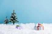 dárky na bílém sněhu v blízkosti vánočních stromků izolované na modré