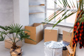 Photo selective focus of carton boxes on floor near plants and easel, moving concept
