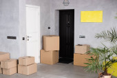 Photo carton boxes near green plant and doors in new apartment, moving concept