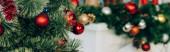 Panoramatický záběr borovic s vánoční koule