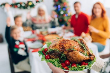 Selective focus of senior man holding plate with traditional roasted turkey, cherry tomatoes and lettuce during christmas dinner with family stock vector
