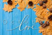 felső kilátás őszi lombozat dió és kúp közelében október szerelem felirat kék fa háttér