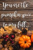 vrchní pohled na podzimní dekorace a dýně v blízkosti vás jsou dýňové koření na mé podzimní nápisy na dřevěném pozadí