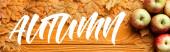 pohled shora na zralá jablka a listí poblíž podzimního nápisu na dřevěném pozadí, panoramatický záběr