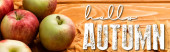 ripe apples and leaves near hello autumn lettering on wooden background, panoramic shot
