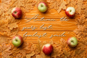top view of ripe apples and leaves near autumn the years last, loveliest smile lettering on wooden background