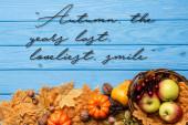 Blick von oben auf die Ernte im Korb im Herbst, die letzten Jahre, schönster Schriftzug mit Lächeln auf blauem Holzgrund