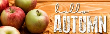 Ripe apples and leaves near hello autumn lettering on wooden background, panoramic shot stock vector