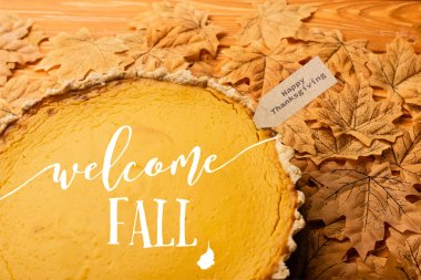 Pumpkin pie with welcome fall lettering and happy thanksgiving tag on leaves stock vector