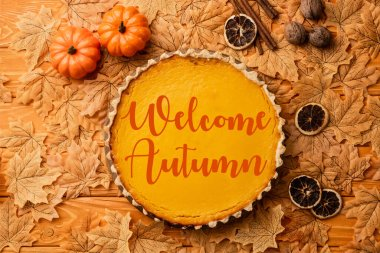 Top view of pumpkin pie with autumnal decoration near welcome autumn lettering on wooden background stock vector