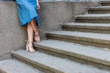 cropped shot of woman in denim skirt and stylish shoes standing on steps