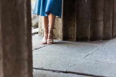cropped shot of woman in denim skirt and shoes standing on street