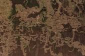 Fotografie staré omšelé hnědé konkrétní pozadí