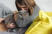 Fotografie abgeschnittene Aufnahme einer jungen Frau, die eine schottische Faltkatze trägt und küsst, während sie auf der Couch sitzt