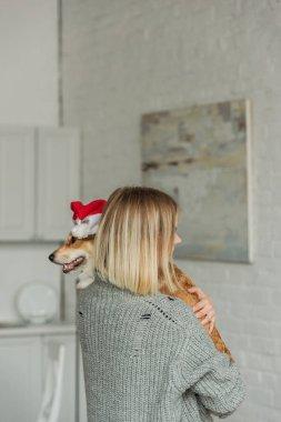 Young woman carrying cute corgi dog in santa hat at home stock vector