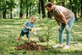 Fotografie father looking how son planting tree at park