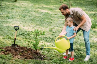 side view of father and son watering seedling with watering can at park