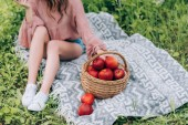 partial view of woman in hat resting on blanket with wicker basket with apples in park