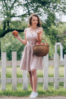 beautiful young woman with wicker basket with ripe apples at countryside
