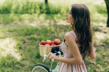 side view of young woman in dress holding retro bicycle with wicker basket full of ripe apples at countryside