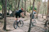 Fotografie zadní pohled na extrémní cyklokrosaři v ochranné přilby na horská kola v lese
