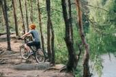 Fotografie zadní pohled na mužské cyklista v helmě, jízda v lese