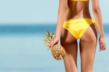 Cropped image of woman in bikini holding pineapple in front of sea stock vector