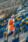 Fotografia Lepilemur giovane che cammina al piano di sopra su scale allo stadio di sport