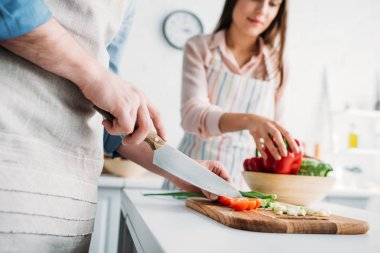 cropped image of boyfriend cutting vegetables and girlfriend taking bell pepper in kitchen