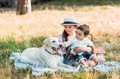 Fotografie brother and sister sitting on blanket with labrador dog