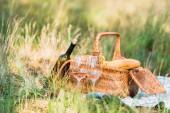 Fotografie láhev na víno, koš s chleby na zelené trávě na pikniku
