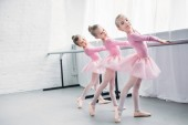 graceful elegant little ballerinas practicing together in ballet studio