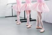 nízké část roztomilé malé děti v růžové tutu sukně a taneční Studio baleríny