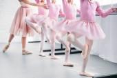 Oříznout záběr dětí v růžové tutu sukně cvičí balet s učitelem v baletní škole