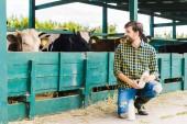 glücklicher Bauer hockt im Stall mit Kühen und hält eine Flasche Milch
