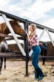 Fotografia vista laterale del coltivatore sorridente attraente palming cavallo in scuderia