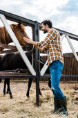 Photo side view of handsome smiling farmer palming horse in stable