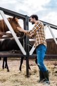 Fotografia vista laterale di bello sorridente contadino palming cavallo in scuderia