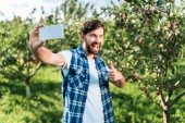 selective focus of farmer showing thumb up to harvest and taking selfie with smartphone in apple garden