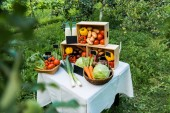Fotografia ripe delicious ecological vegetables in boxes at farmer market