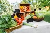 Fotografia ripe ecological vegetables in boxes on market stall