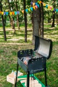 Fotografie close up view of grill with logs for barbecue in park