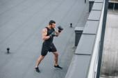 pohled z vysokého úhlu boxer školení na střeše