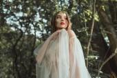 Fotografie krásný mystický elf v elegantních šatech v lese