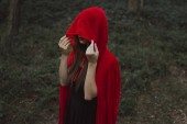 Fotografie mystic girl in red cloak and hood in forest